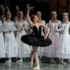 Балет «Лебединое озеро» в Александринском театре
