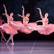 Классические балеты фотографии