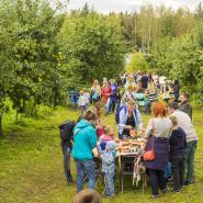 Праздник «Яблочный полдень» в Царском Селе 2018 фотографии