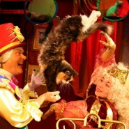Премьера спектакля театра кошек Ю. Куклачёва «МЯУГЛИ» фотографии
