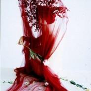 Выставка  «Сотворенная жизнь» фотографии