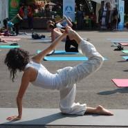Фестиваль «Всемирный день йоги» 2016 фотографии