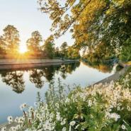 Открытие парков в Санкт-Петербурге лето 2020 фотографии