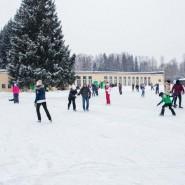 Ледовый каток в Павловском парке 2017 фотографии