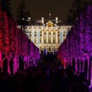 Зимний вечер света в Царском Селе 2018 фотографии