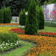 Приморский Парк Победы фотографии