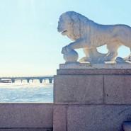 Посещение Центрального парка имени С. М. Кирова июнь 2021 фотографии