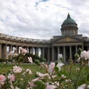 Топ-13 интересных событий в Санкт-Петербурге на выходные с 12 по 14 июня 2021 фотографии