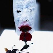 Выставка «Fake» фотографии