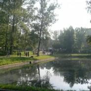 Парк сказок имени И. В. Бабушкина фотографии