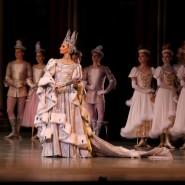 Балет «Лебединое озеро» в Александринском театре фотографии