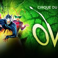 Шоу «OVO Cirque du Soleil» фотографии