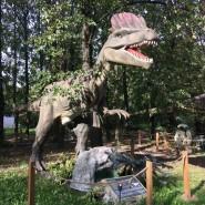 Музей динозавров «Динопарк» работает по выходным дням фотографии