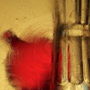 Выставка «Натюрморт в фотографии» фотографии