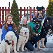 Конный клуб Western Horse фотографии