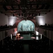 Концерт «Триумфальный орган» фотографии