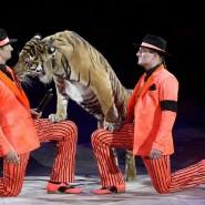 Шоу Большого Московского цирка  «Эмоции и..» фотографии