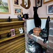 Арт-пикник и День дарения в музее Кошки 2017 фотографии