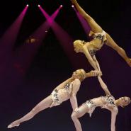 Цирковая программа  «Желание Летать» фотографии