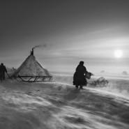 Выставка фотографий из проекта «Генезис» фотографии