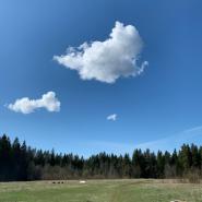 Выставка «Облака времени» фотографии