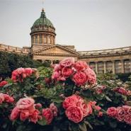 Топ-10 интересных событий в Санкт-Петербурге на выходные 4 и 5 августа фотографии