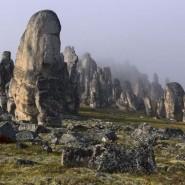 Выставка «Современное искусство Дагестана» фотографии