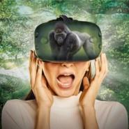 Интерактивная Выставка Виртуальной Реальности» лето 2021 фотографии
