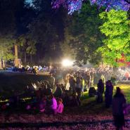 Фестиваль «Ночь музыки в Гатчине» 2019 фотографии