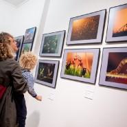 Интересные выставки в Санкт-Петербурге в марте 2021 г. фотографии