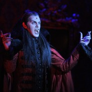 Старт заключительной серии показов мюзикла «Бал вампиров» фотографии