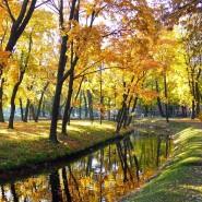 Топ-10 интересных событий в Санкт-Петербурге на выходные 27 и 28 октября фотографии