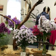 Фестиваль флоксов в Ботаническом саду 2018 фотографии