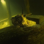 Выставка «Три века под водой» фотографии