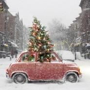 Зимний фестиваль «Сейчастье» фотографии
