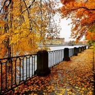 Топ лучших событий в Санкт-Петербурге в выходные 30 сентября и 1 октября фотографии