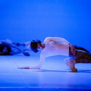 Фестиваль современного танца «Оpen look» 2016 фотографии
