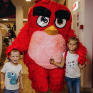 Пернатый День Знаний в Angry Birds Activity Park фотографии