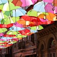 Фотовыставка «Цветной Петербург» фотографии