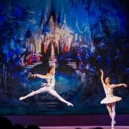 Гала-концерт оперы и балета «Рождественский карнавал» фотографии