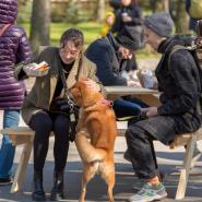 Фестиваль домашних животных в Приморском парке Победы-2021 фотографии