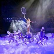 Премьера цирковой программы «Баронеты» фотографии