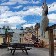 Крыша Лофт Проекта Этажи осень 2021 фотографии