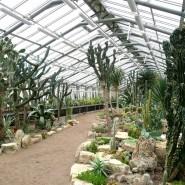 Ботанический сад Петра Великого фотографии