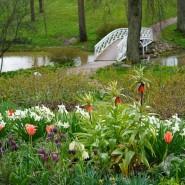 Парк Усадьбы Марьино открыт для посетителей фотографии