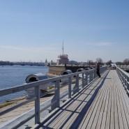 Обзорный маршрут «Невская панорама» фотографии