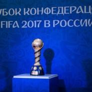 Парк Кубка Конфедераций «FIFA 2017» фотографии