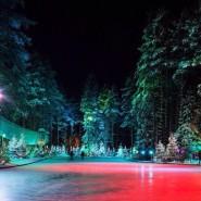 Каток в Охта Парке 2020/21 фотографии