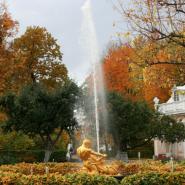 Закрытие фонтанов в Петергофе фотографии