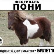 Фестиваль «Пони» фотографии